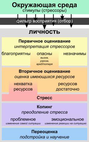На картинке изображен процесс оценки стресса (вроде всё понятно)  Когда мы...