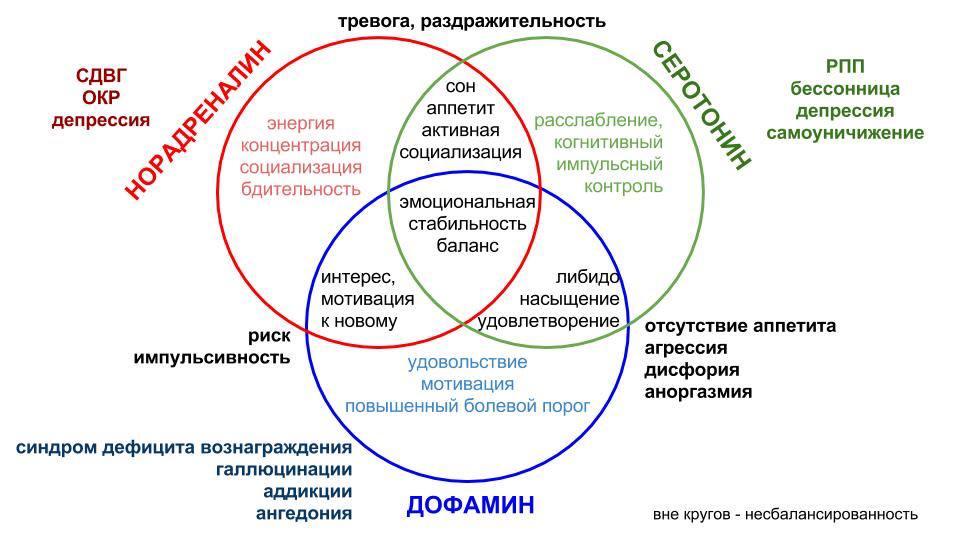 Внутри круга - баланс нейромедиаторов, вне круга - несбалансированность.