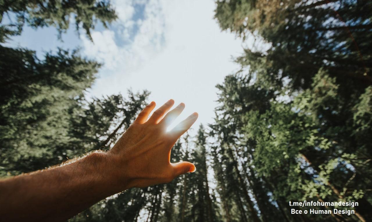Сиддхи – Единство   Это высшее проявление Дара️  У Человека открывается видение...