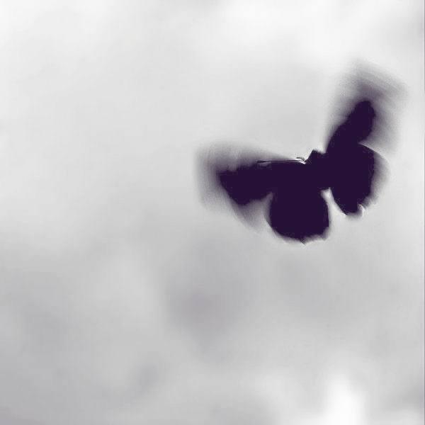 """""""Эффект бабочки""""  Есть такой фильм, где главный герой возвращался в..."""
