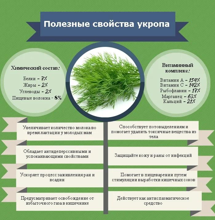 Укроп применяют в косметологии  В нем содержится много растительных...