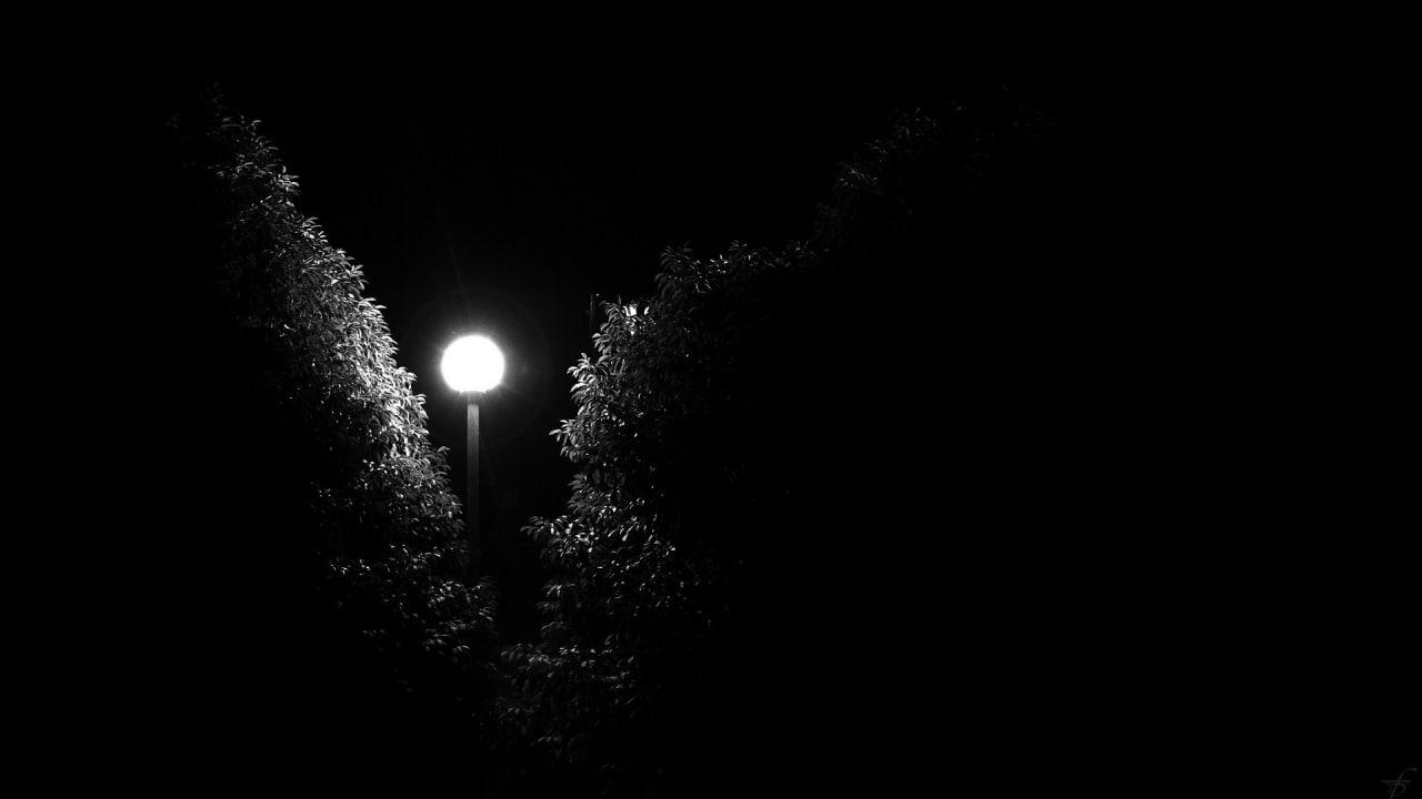 – Звезды не боятся, что их примут за светлячков.  Рабиндранат Тагор