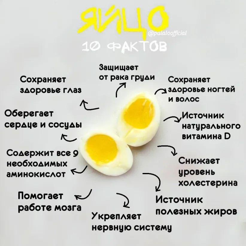 Самые полезные яйца  По количеству лецитина яйца занимают первое место и...