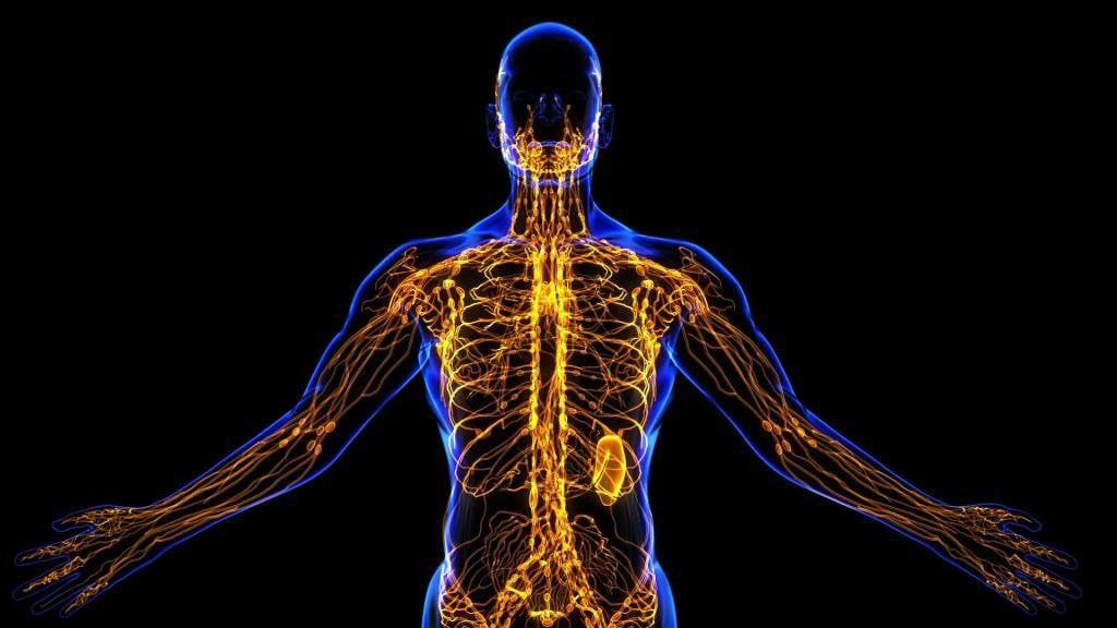 Инсульты и инфаркты у мужчин случаются чаще и по причине большей степени...