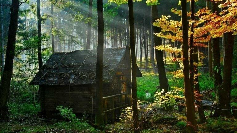 Строитель своей жизни  Жил-был прораб. Всю жизнь он строил дома, но стал стар и...