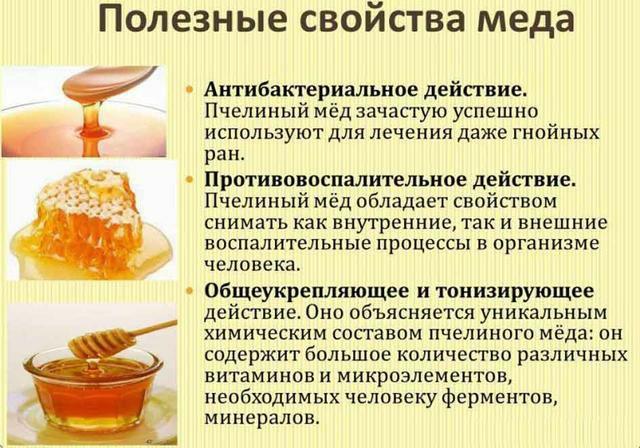  Топ-5 полезных свойств меда для здоровья  Мед – уникальный продукт, с какой...