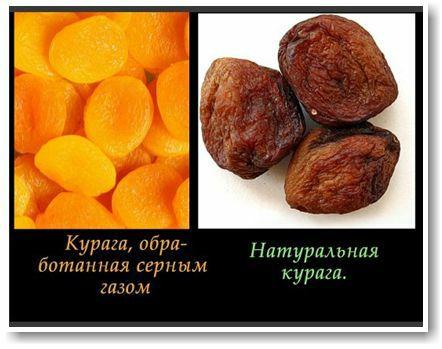 ️ Принято считать все орехи и сухофрукты полезны. Но так ли это на самом...