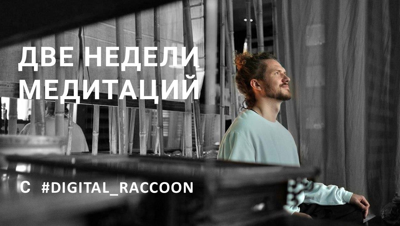 Две недели медитаций с  digital_raccoon  Наш канал посвящён саморазвитию, а...